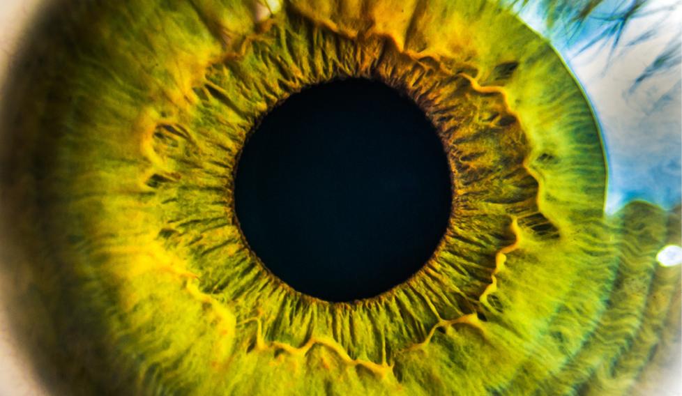 Problemes de visió: consells i recomanacions